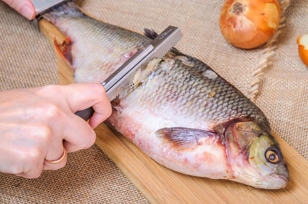 Come squamare un pesce