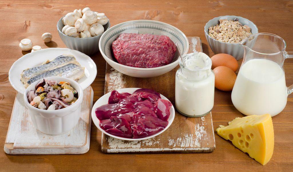 Vitamina b12, quali alimenti la contengono