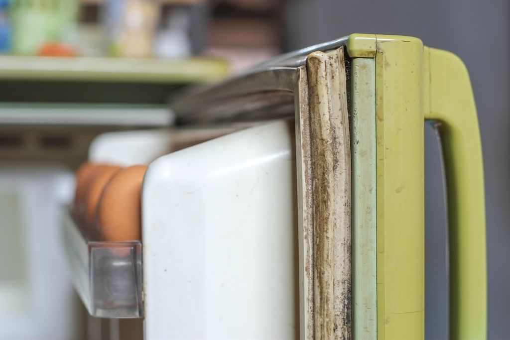 Come pulire le guarnizioni del frigo