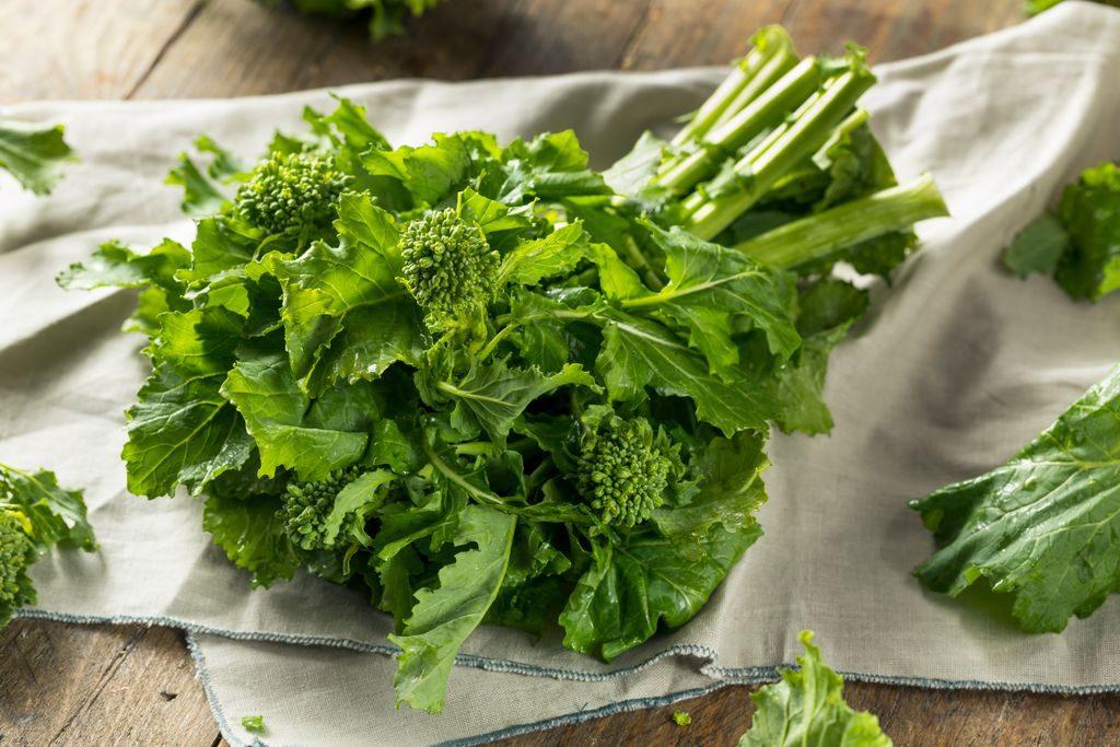 Cime di rapa (Friarielli / Broccoli di rapa / Broccoletti)