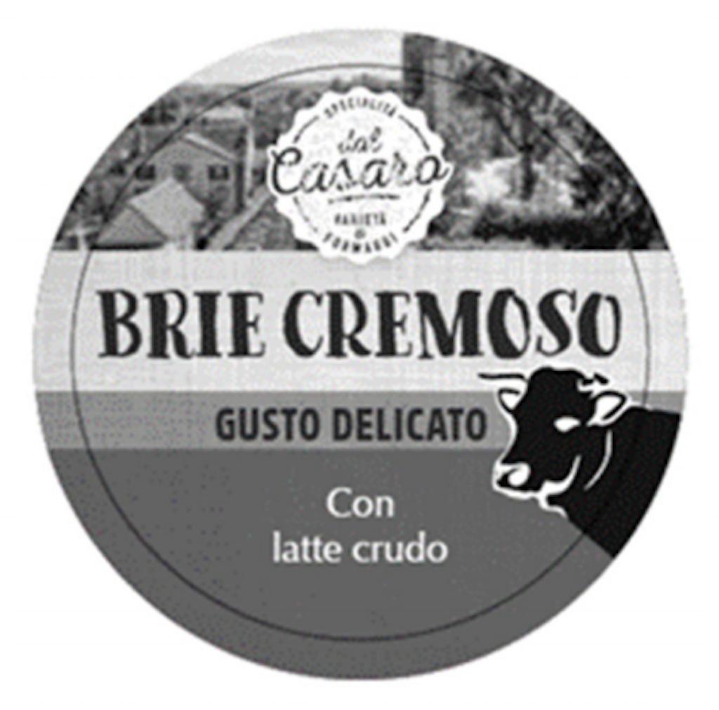 Il formaggio Brie Cremoso Specialità del Casaro, in vendita al LIDL, è stato richiamato per la presenza del batterio E. Coli VTEC.