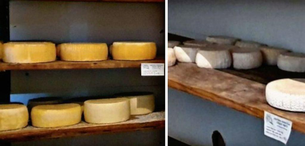 Richiamata la formaggella a latte crudo della ditta Chiarelli Pierluigi per listeria