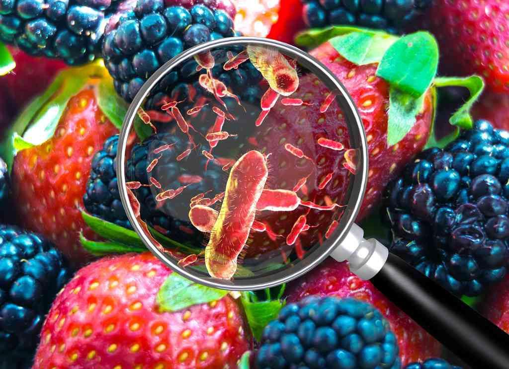 Reati per frodi alimentari: bloccata la depenalizzazione dei reati alimentari